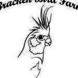 Bracken Bird Farm
